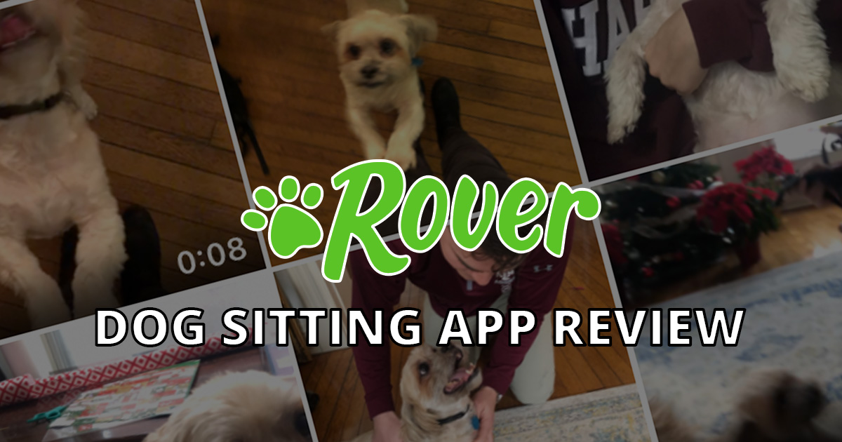 Rover app review and discount